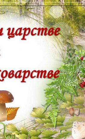 Виртуальная книжная выставка «О грибном царстве и грибном коварстве»